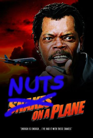 nuts on a plane.jpg