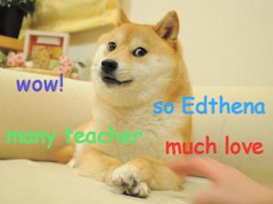 edthena doge