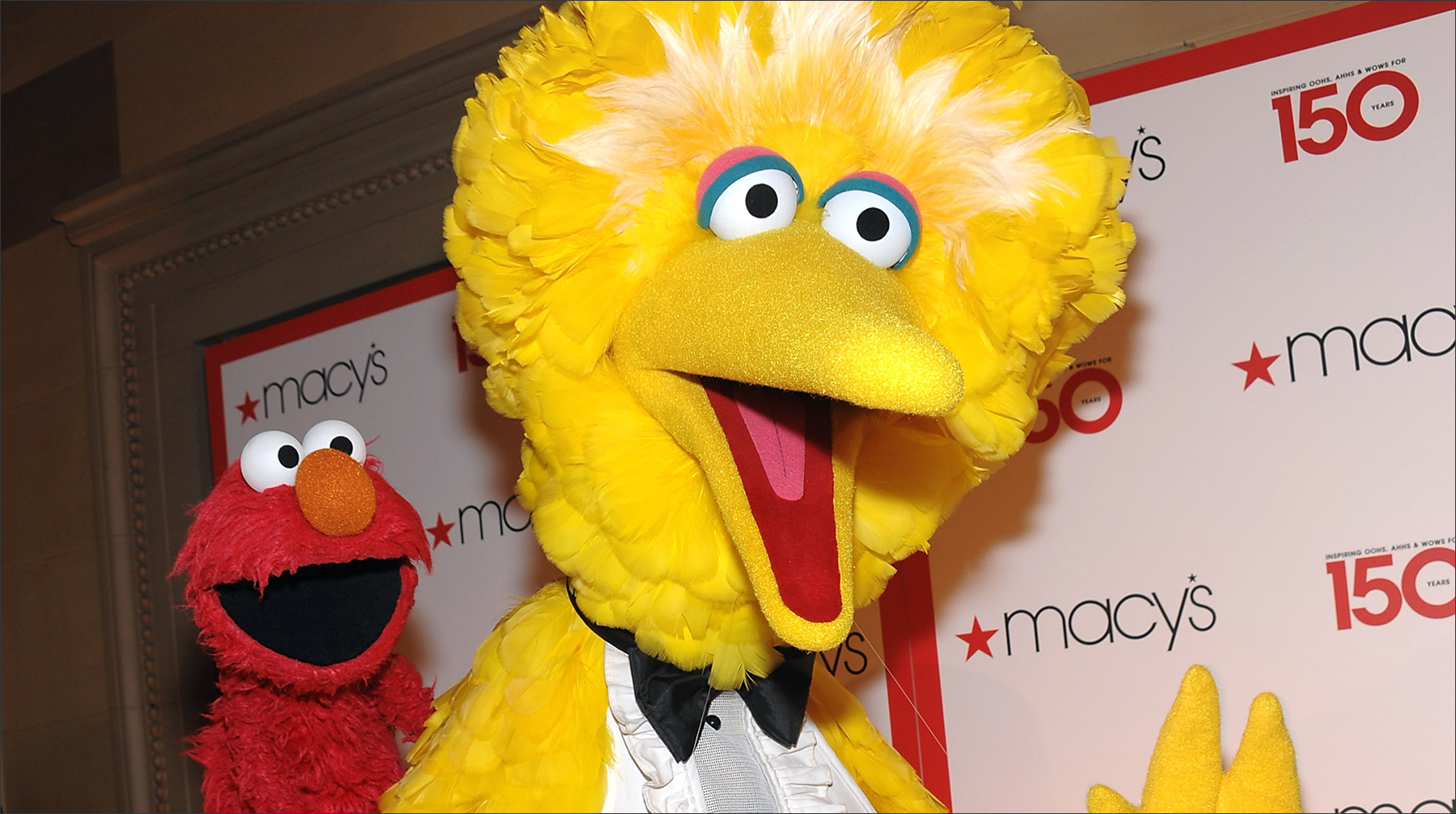 Can Big Bird And Elmo Boost Social Emotional Learning Market Brief